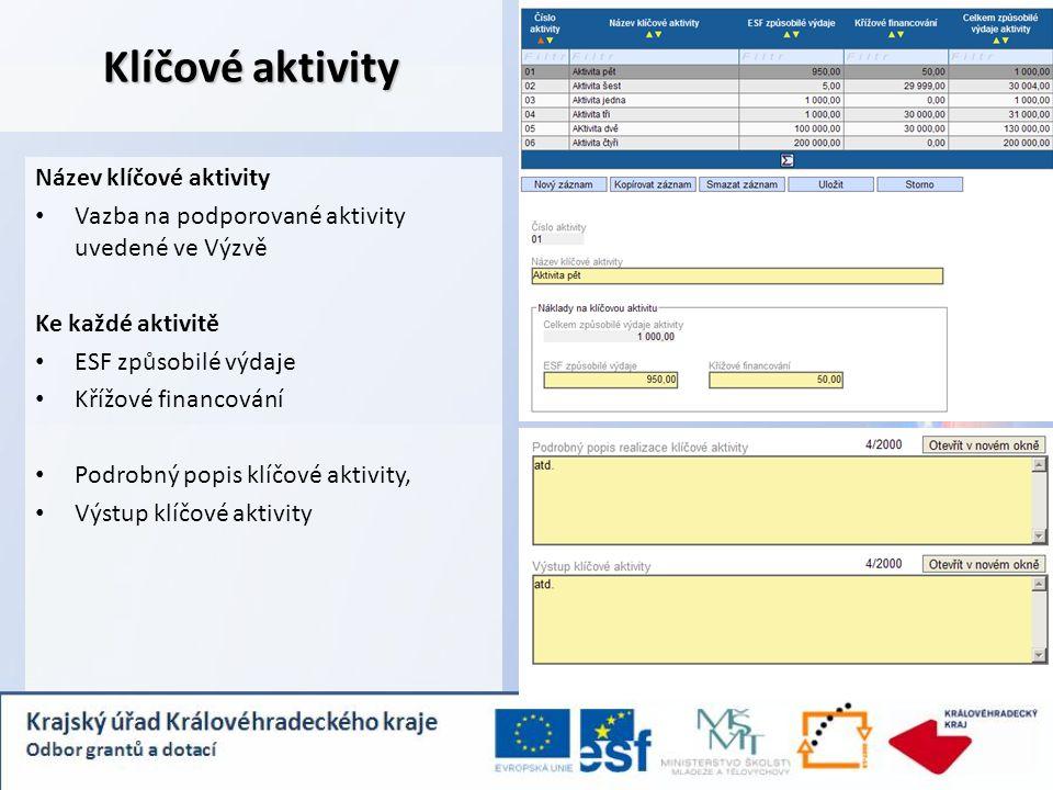 Klíčové aktivity Název klíčové aktivity Vazba na podporované aktivity uvedené ve Výzvě Ke každé aktivitě ESF způsobilé výdaje Křížové financování Podrobný popis klíčové aktivity, Výstup klíčové aktivity