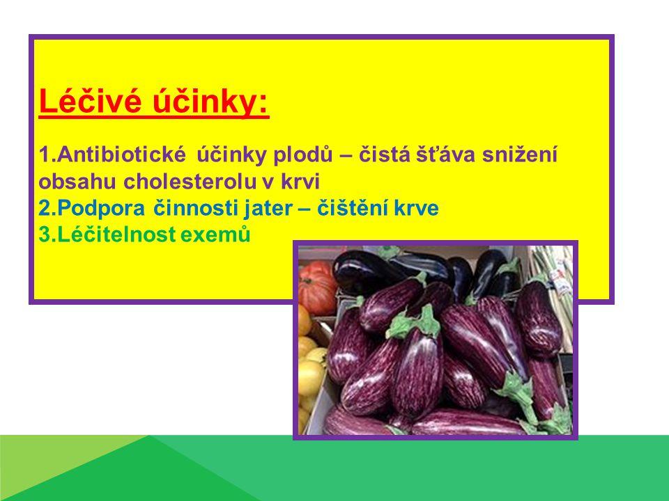 Léčivé účinky: 1.Antibiotické účinky plodů – čistá šťáva snižení obsahu cholesterolu v krvi 2.Podpora činnosti jater – čištění krve 3.Léčitelnost exemů