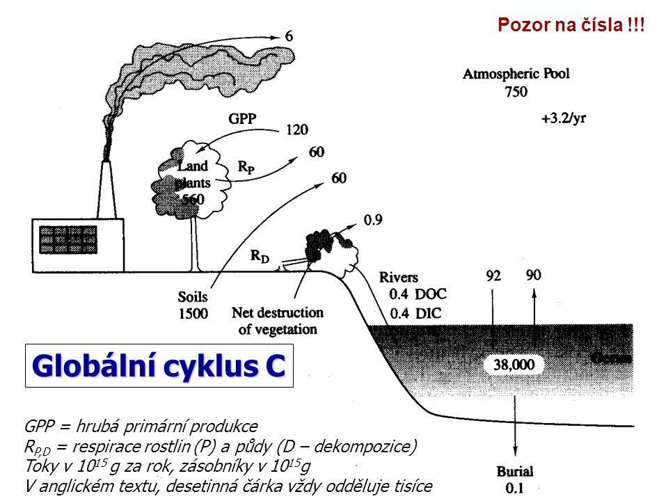 GPP = hrubá primární produkce R P,D = respirace rostlin (P) a půdy (D – dekompozice) Toky v 10 15 g za rok, zásobníky v 10 15 g V anglickém textu, des