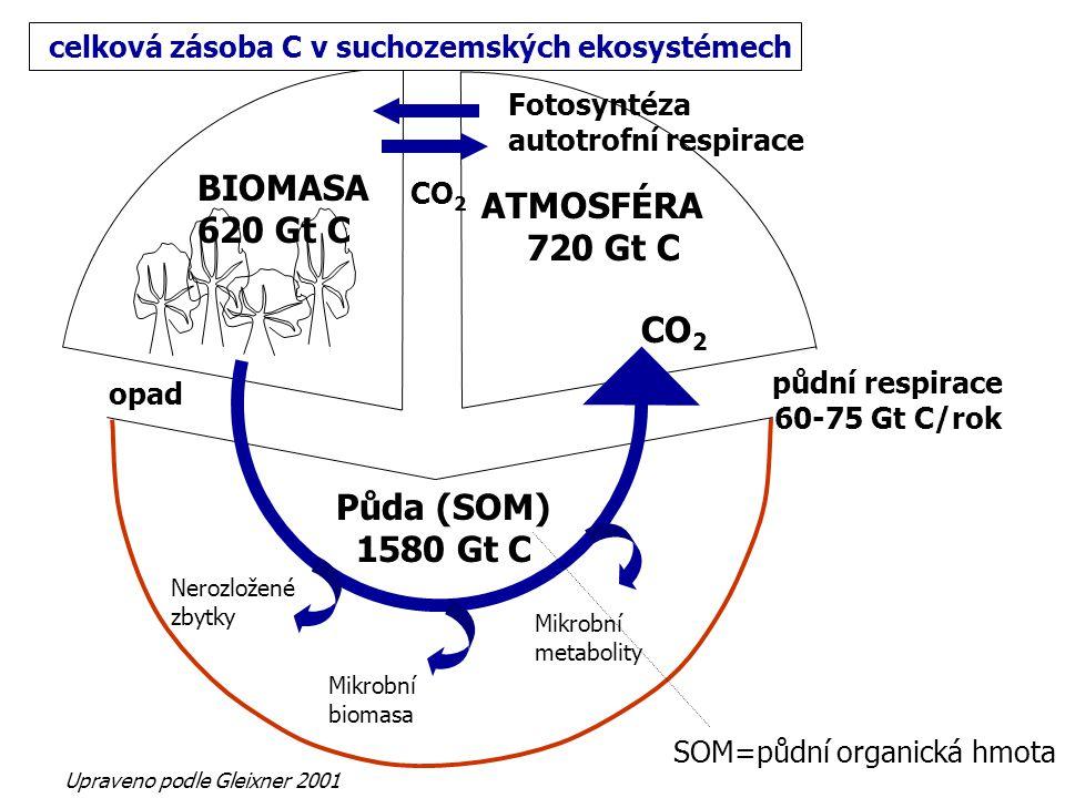 Mikrobní biomasa Mikrobní metabolity Nerozložené zbytky Půda (SOM) 1580 Gt C BIOMASA 620 Gt C ATMOSFÉRA 720 Gt C SOM=půdní organická hmota CO 2 opad F