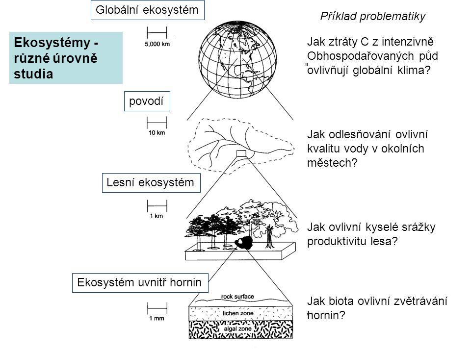 Ekosystémy - různé úrovně studia Globální ekosystém povodí Lesní ekosystém Ekosystém uvnitř hornin Jak ztráty C z intenzivně Obhospodařovaných půd ovl