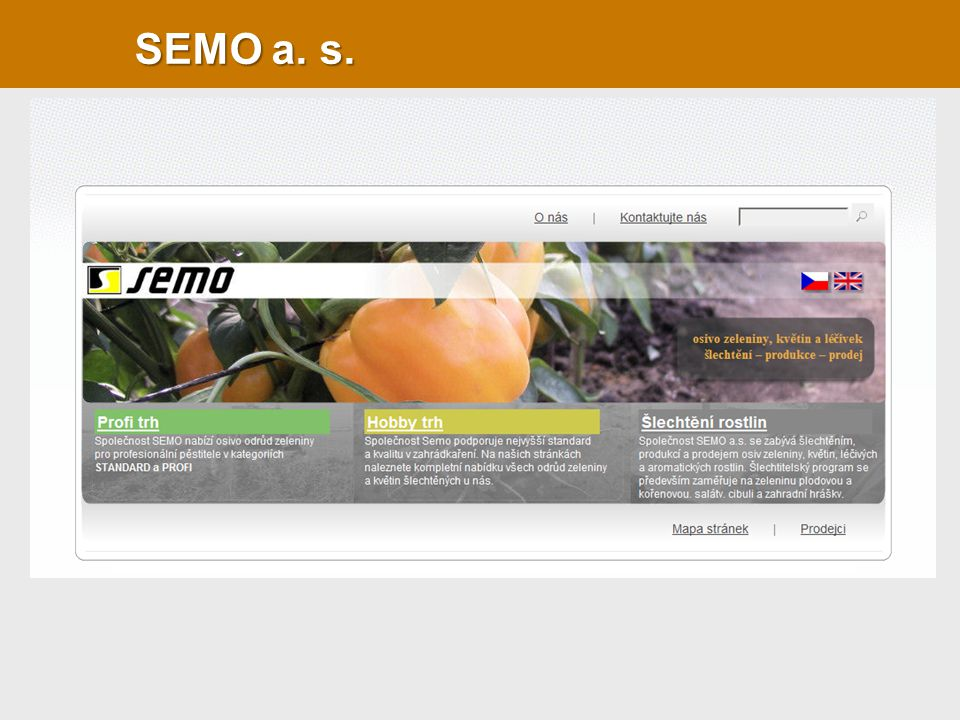 SEMO a. s.