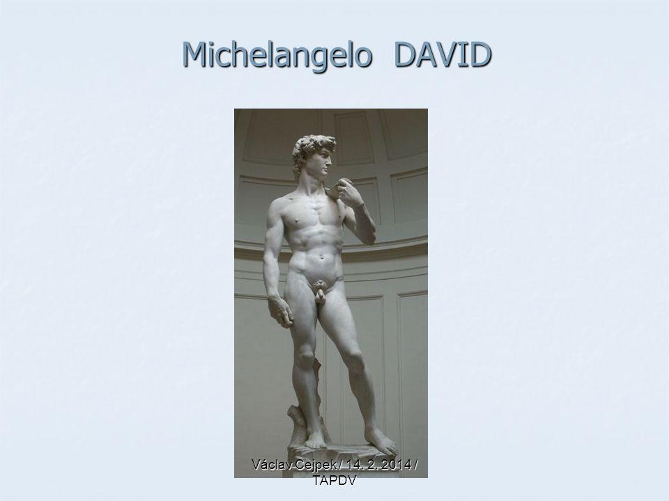 Michelangelo DAVID Václav Cejpek / 14. 2. 2014 / TAPDV