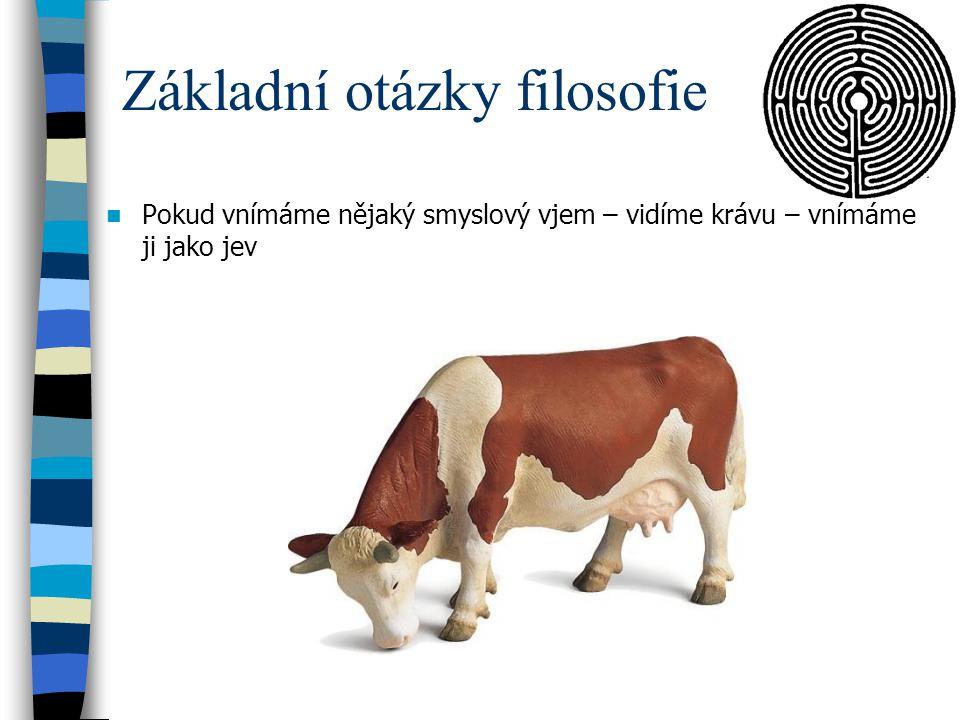 Základní otázky filosofie Pokud vnímáme nějaký smyslový vjem – vidíme krávu – vnímáme ji jako jev