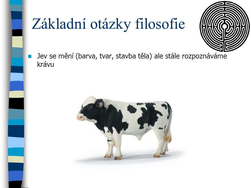 Základní otázky filosofie Jev se mění (barva, tvar, stavba těla) ale stále rozpoznáváme krávu