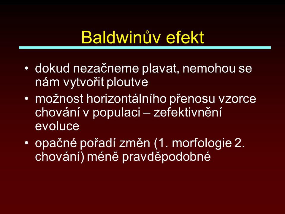 Baldwinův efekt dokud nezačneme plavat, nemohou se nám vytvořit ploutve možnost horizontálního přenosu vzorce chování v populaci – zefektivnění evoluce opačné pořadí změn (1.