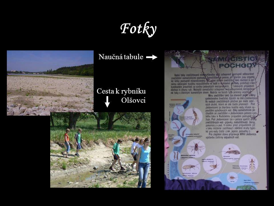 Fotky Cesta k rybníku Olšovci Naučná tabule