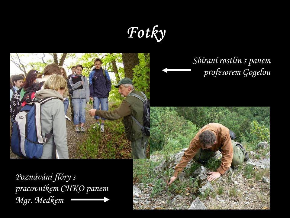 Fotky Sbíraní rostlin s panem profesorem Gogelou Poznávání flóry s pracovníkem CHKO panem Mgr. Medkem