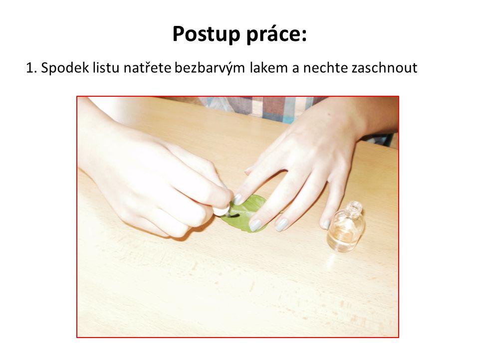 Postup práce: 1. Spodek listu natřete bezbarvým lakem a nechte zaschnout
