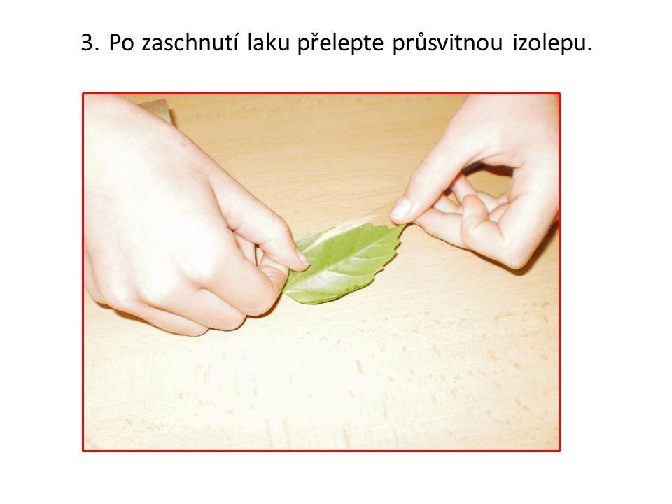 3. Po zaschnutí laku přelepte průsvitnou izolepu.