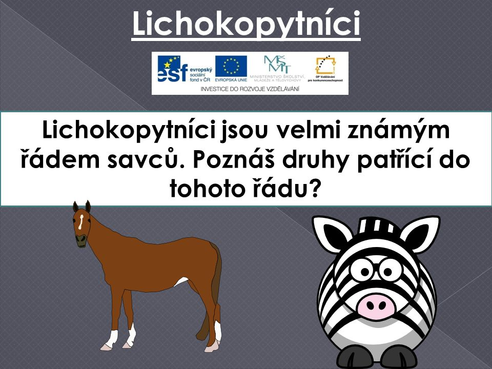 Kůň Převalského  žil v polopouštích Mongolska a Číny  jediný žijící předek zdomácnělého koně  dnes žije pouze v zajetí v zoologických zahradách