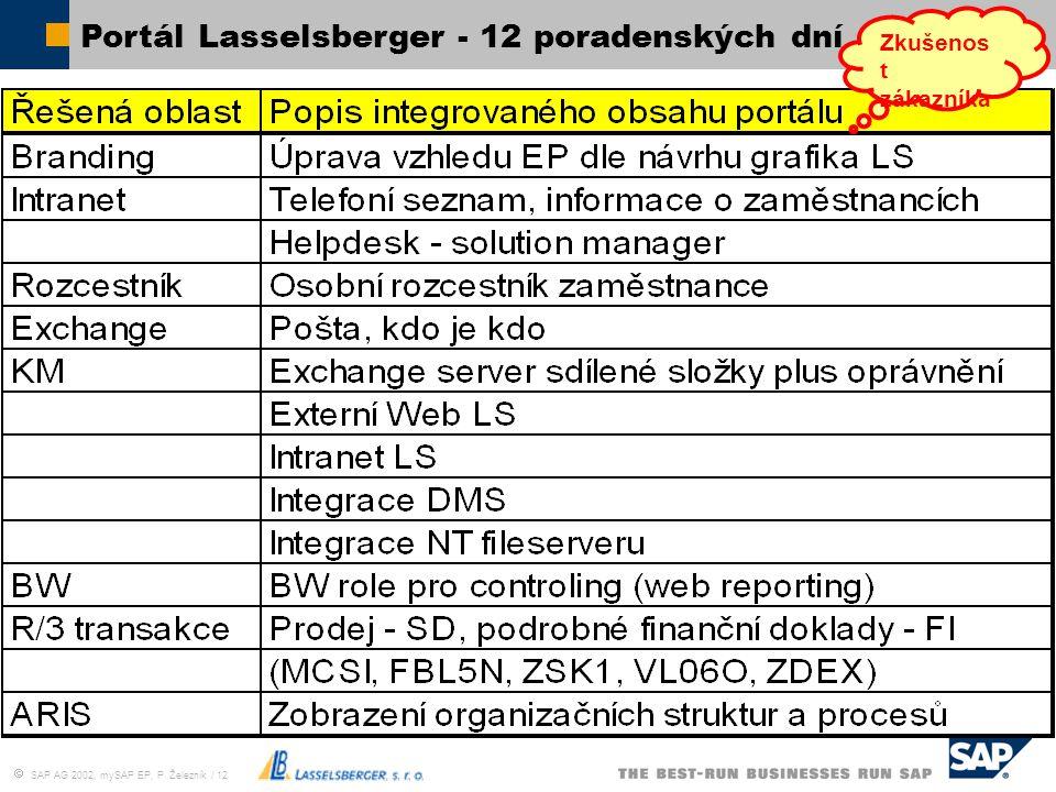  SAP AG 2002, mySAP EP, P. Železník / 12 Portál Lasselsberger - 12 poradenských dní Zkušenos t zákazníka