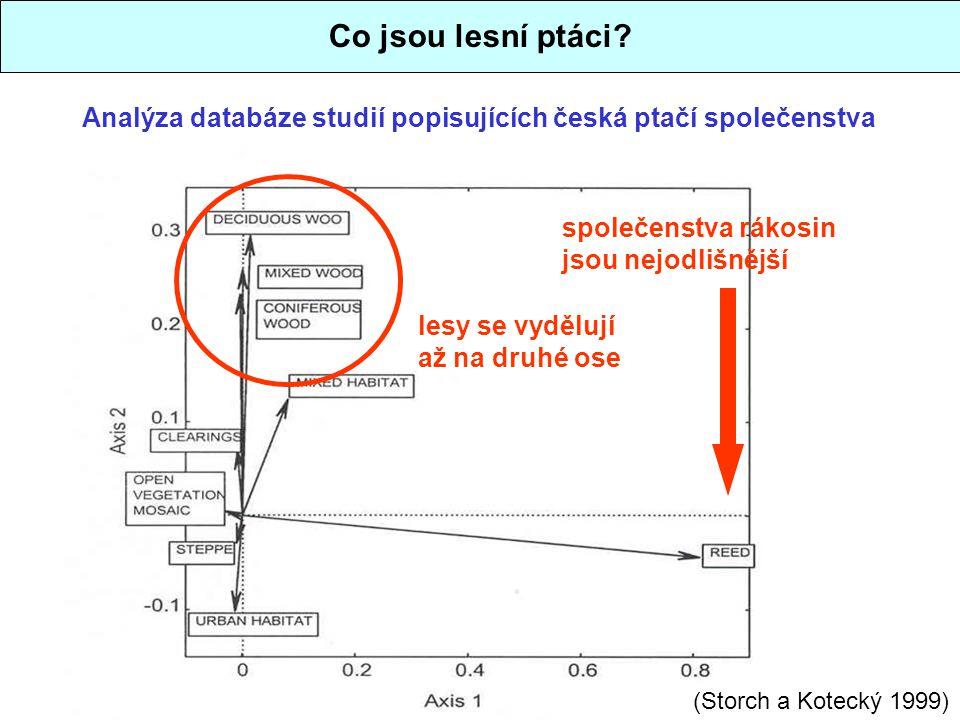 Co jsou lesní ptáci? Analýza databáze studií popisujících česká ptačí společenstva společenstva rákosin jsou nejodlišnější lesy se vydělují až na druh