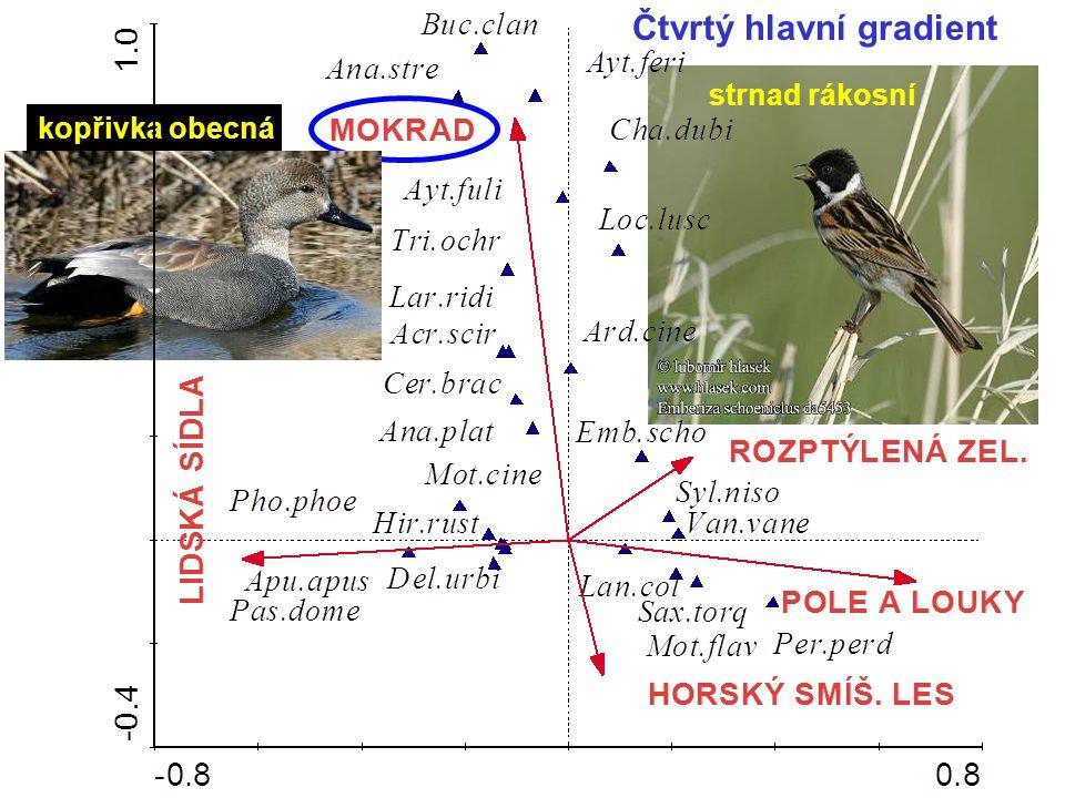 Čtvrtý hlavní gradient kopřivka obecná strnad rákosní
