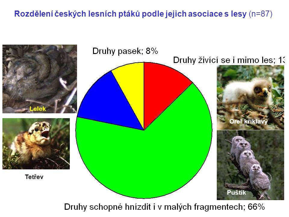 Druhy vnitřního lesa; 14% Rozdělení českých lesních ptáků podle jejich asociace s lesy (n=87) Orel křiklavý Tetřev Puštík Lelek