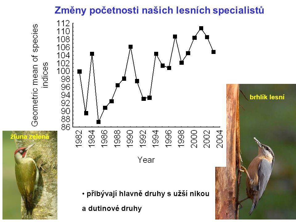 Změny početnosti našich lesních specialistů přibývají hlavně druhy s užší nikou brhlík lesní a dutinové druhy žluna zelená