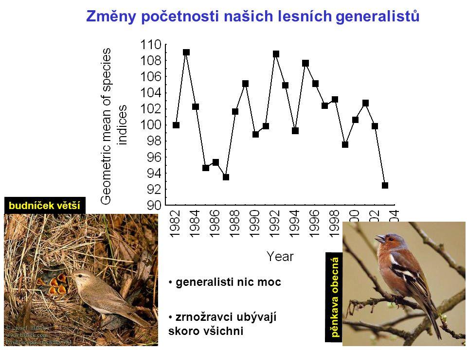 Změny početnosti našich lesních generalistů generalisti nic moc zrnožravci ubývají skoro všichni budníček větší pěnkava obecná