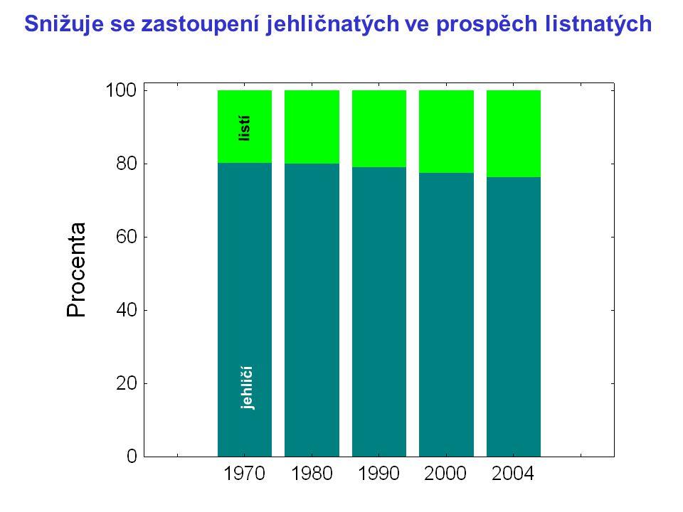 Snižuje se zastoupení jehličnatých ve prospěch listnatých jehličí listí