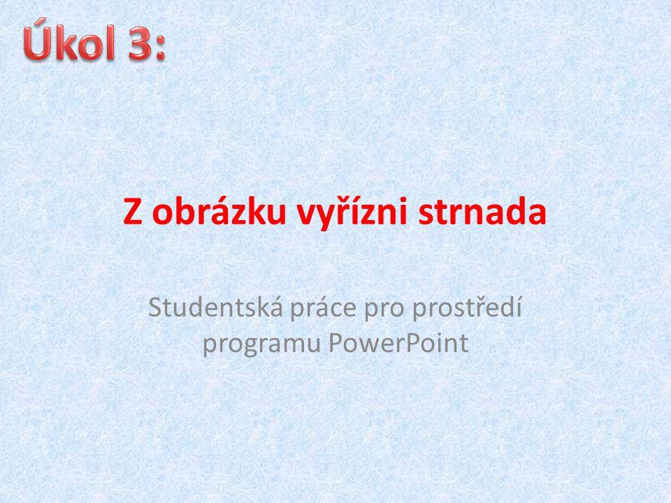 Z obrázku vyřízni strnada Studentská práce pro prostředí programu PowerPoint