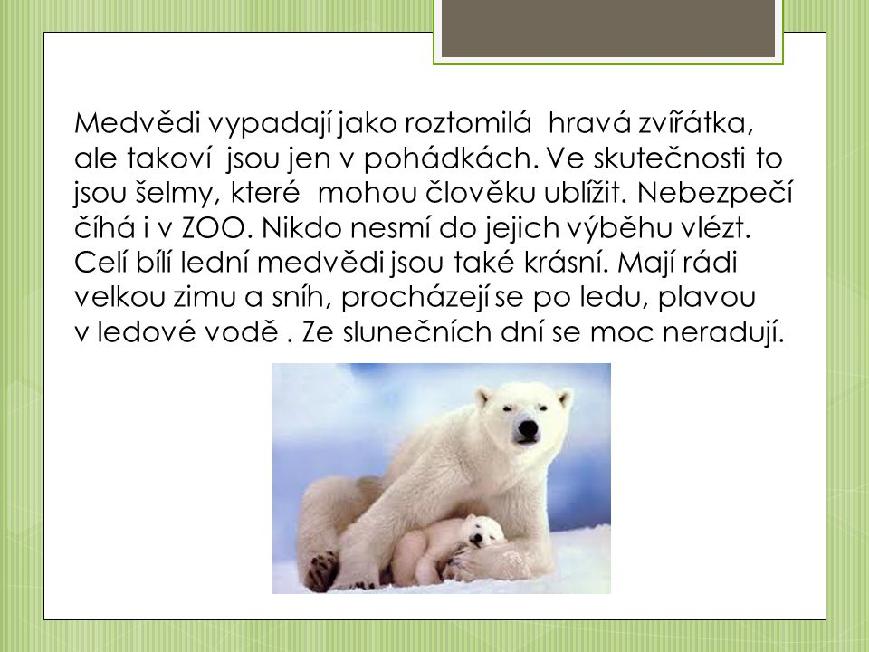 Medvědi vypadají jako roztomilá hravá zvířátka, ale takoví jsou jen v pohádkách.