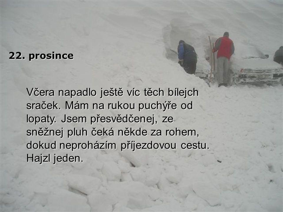 19. prosince Další sníh napadl minulou noc.