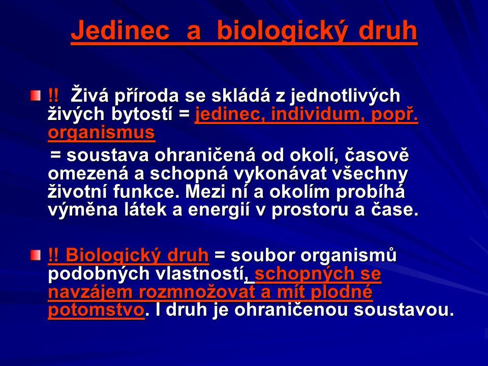 Jedinec a biologický druh !! Živá příroda se skládá z jednotlivých živých bytostí = jedinec, individum, popř. organismus = soustava ohraničená od okol