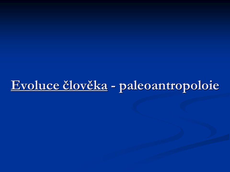 Evoluce člověka - paleoantropoloie