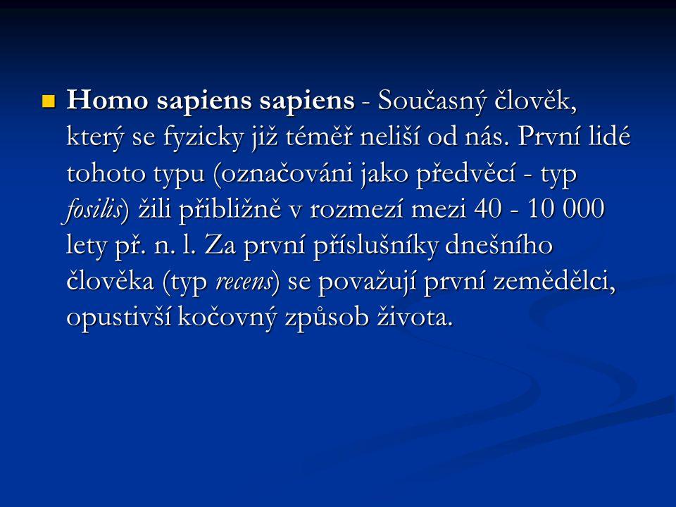 Homo sapiens sapiens - Současný člověk, který se fyzicky již téměř neliší od nás. První lidé tohoto typu (označováni jako předvěcí - typ fosilis) žili