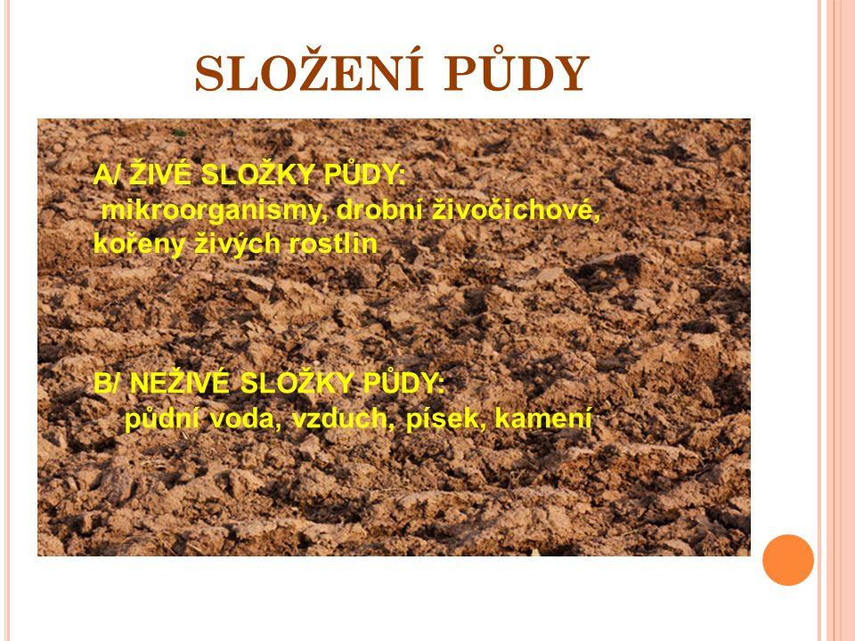 SLOŽENÍ PŮDY A/ ŽIVÉ SLOŽKY PŮDY: mikroorganismy, drobní živočichové, kořeny živých rostlin B/ NEŽIVÉ SLOŽKY PŮDY: půdní voda, vzduch, písek, kamení