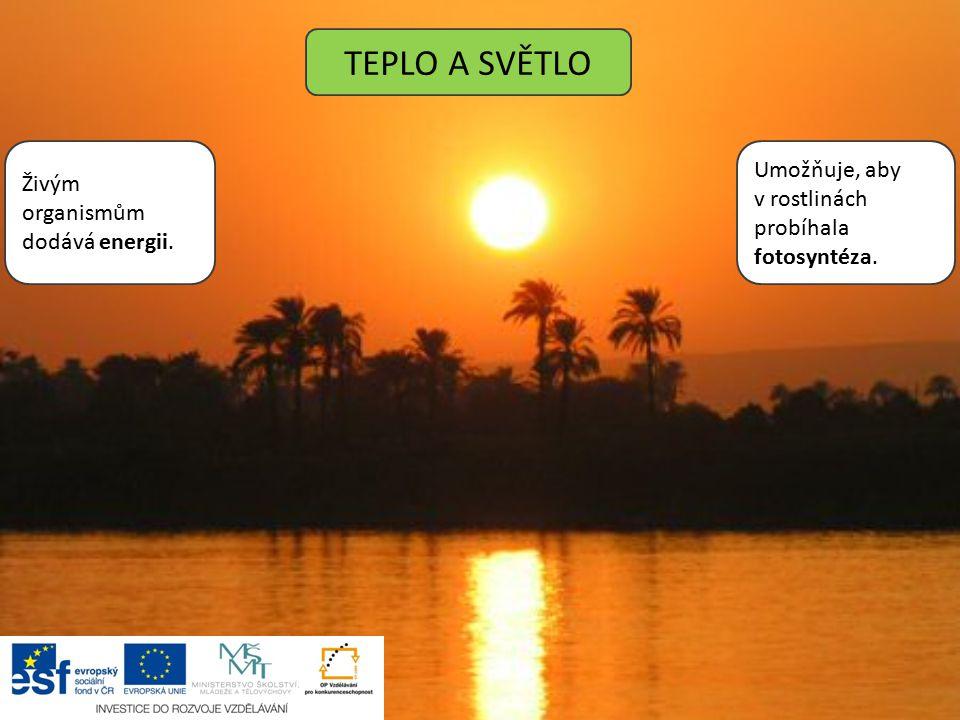 TEPLO A SVĚTLO Živým organismům dodává energii. Umožňuje, aby v rostlinách probíhala fotosyntéza.