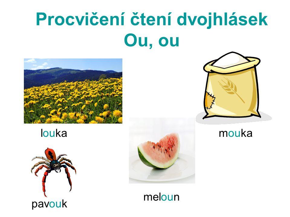 Procvičení čtení dvojhlásek Ou, ou loukamouka pavouk meloun