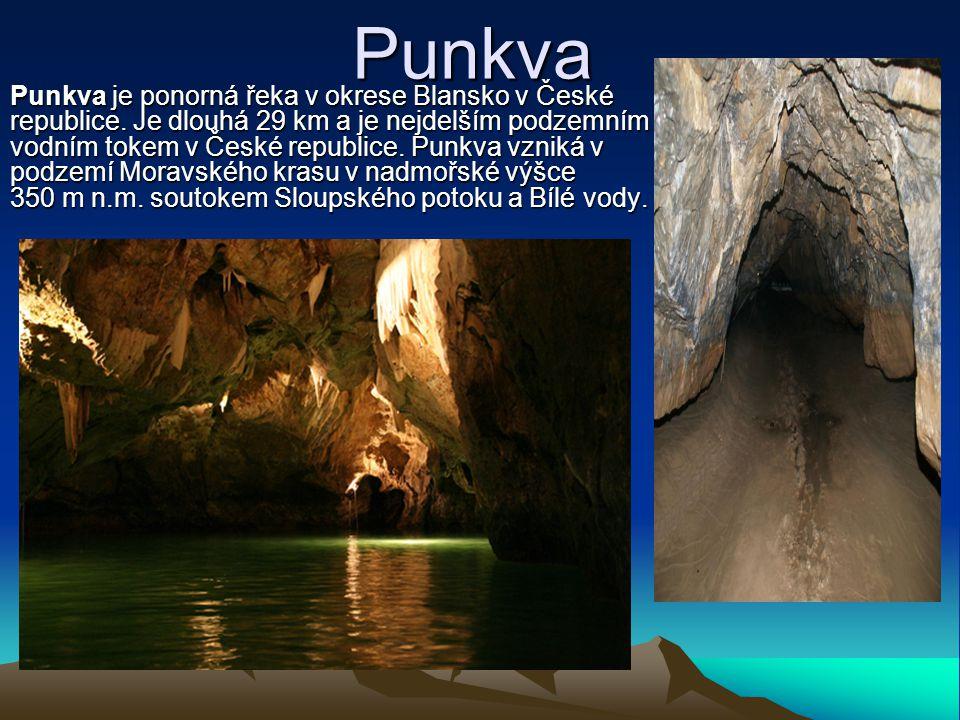 Punkva Punkva je ponorná řeka v okrese Blansko v České republice. Je dlouhá 29 km a je nejdelším podzemním vodním tokem v České republice. Punkva vzni