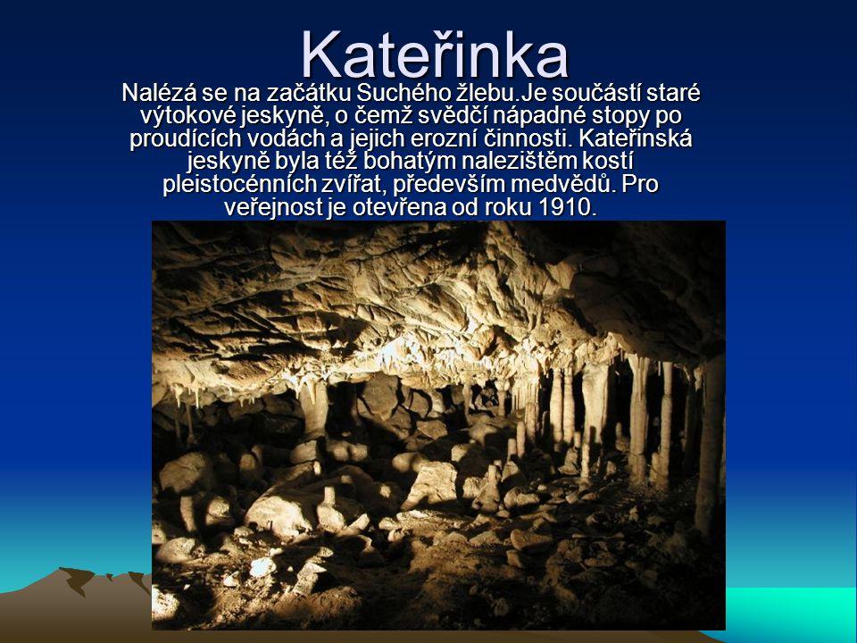 Kateřinka Nalézá se na začátku Suchého žlebu.Je součástí staré výtokové jeskyně, o čemž svědčí nápadné stopy po proudících vodách a jejich erozní činn