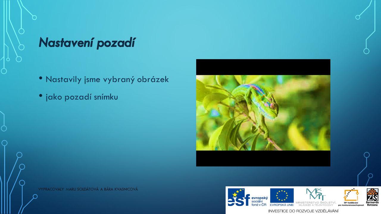 Nastavily jsme vybraný obrázek jako pozadí snímku VYPRACOVALY MARU SOLDÁTOVÁ A BÁRA KVASNICOVÁ