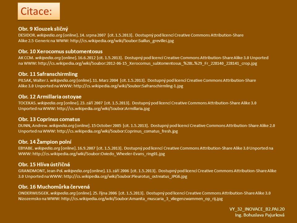 Obr. 9 Klouzek sličný DESIDOR. wikipedia.org [online]. 14. srpna 2007 [cit. 1.5.2013]. Dostupný pod licencí Creative Commons Attribution-Share Alike 2