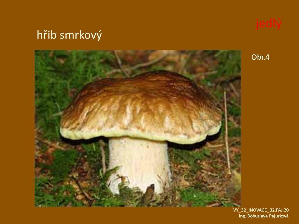 hřib smrkový Obr.4 VY_32_INOVACE_B2.PAJ.20 Ing. Bohuslava Pajurková jedlý