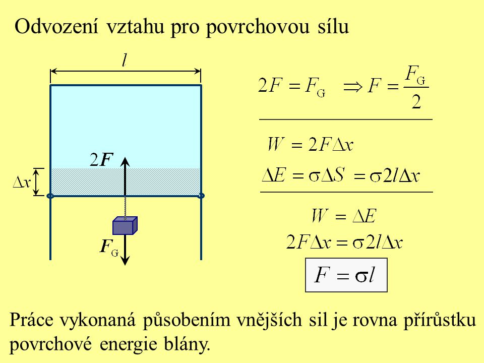 Odvození vztahu pro povrchovou sílu Práce vykonaná působením vnějších sil je rovna přírůstku povrchové energie blány.