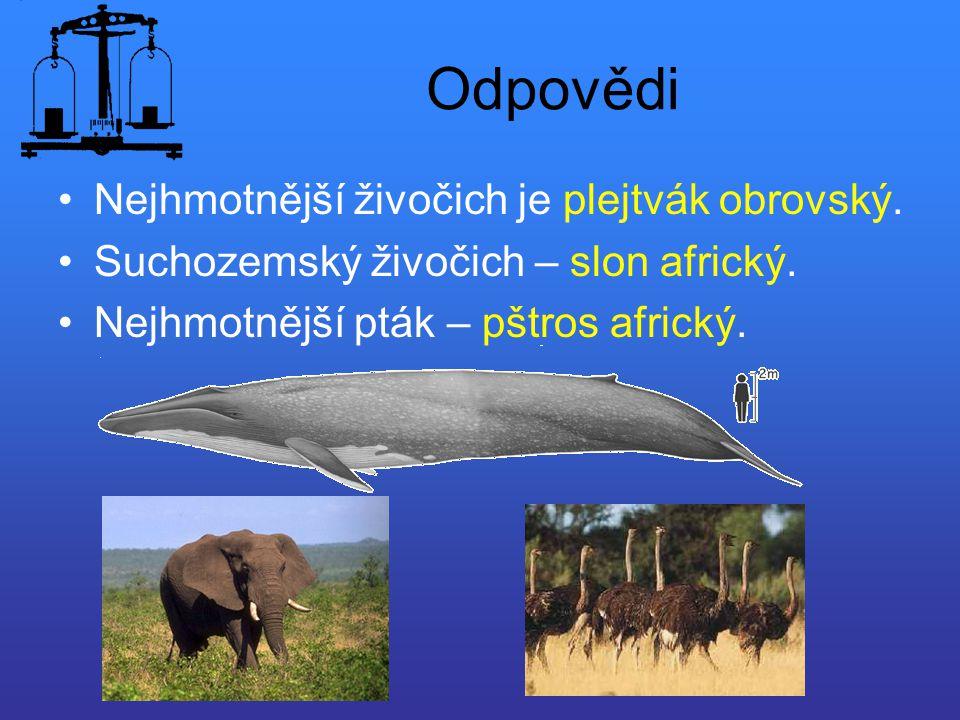 Odpovědi Nejhmotnější živočich je plejtvák obrovský. Suchozemský živočich – slon africký. Nejhmotnější pták – pštros africký.