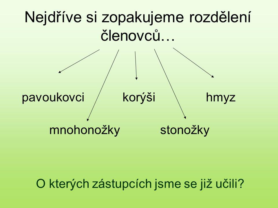 Členovci v lesích 2 Vladislava Zubrová