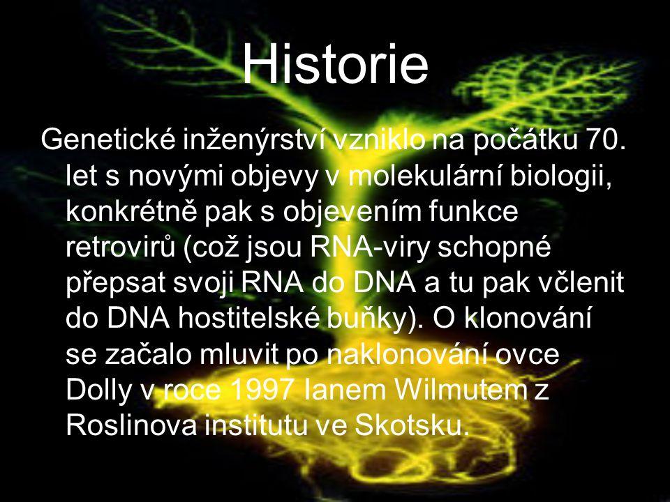 Historie Genetické inženýrství vzniklo na počátku 70.