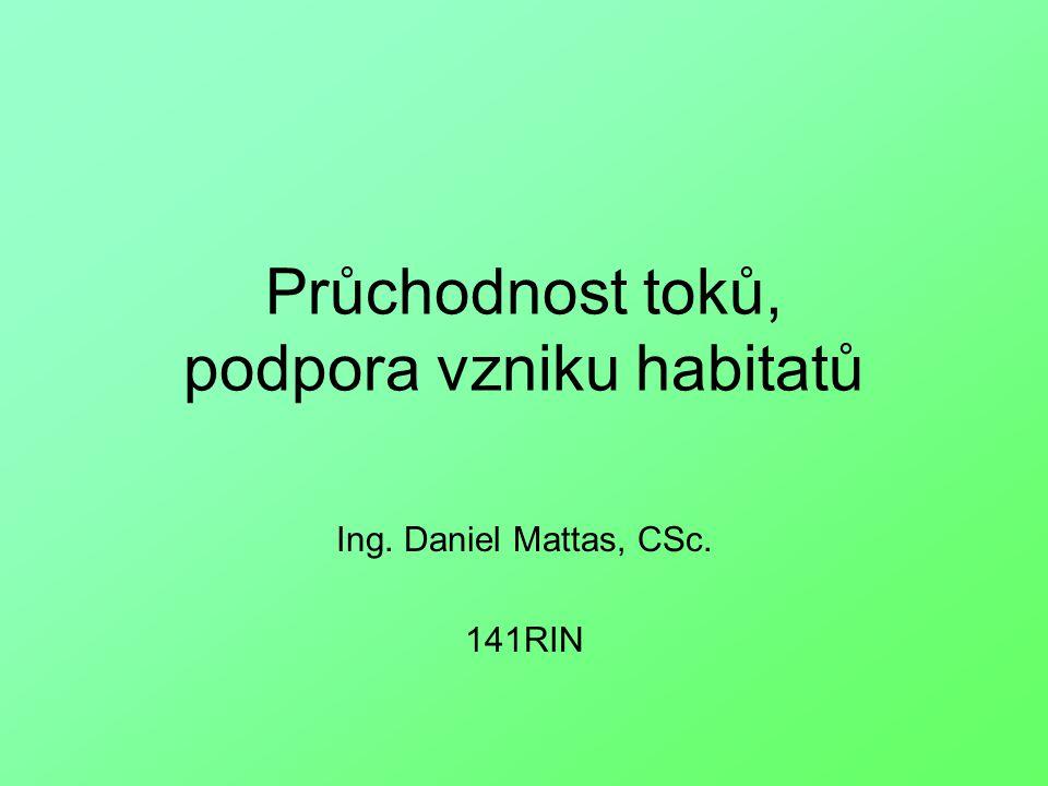 Průchodnost toků, podpora vzniku habitatů Ing. Daniel Mattas, CSc. 141RIN