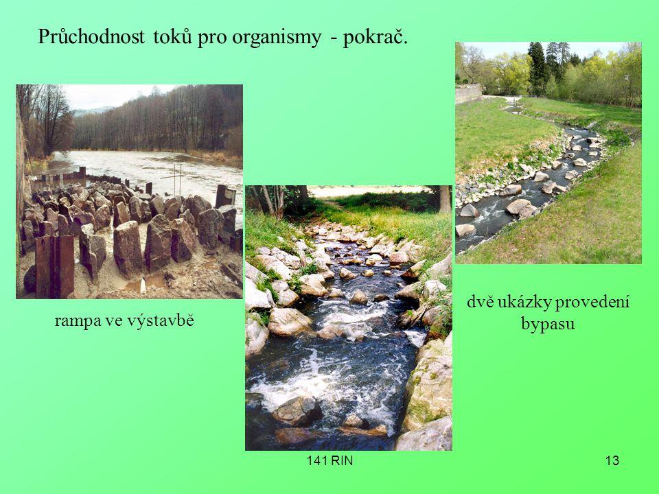 141 RIN13 Průchodnost toků pro organismy - pokrač. rampa ve výstavbě dvě ukázky provedení bypasu