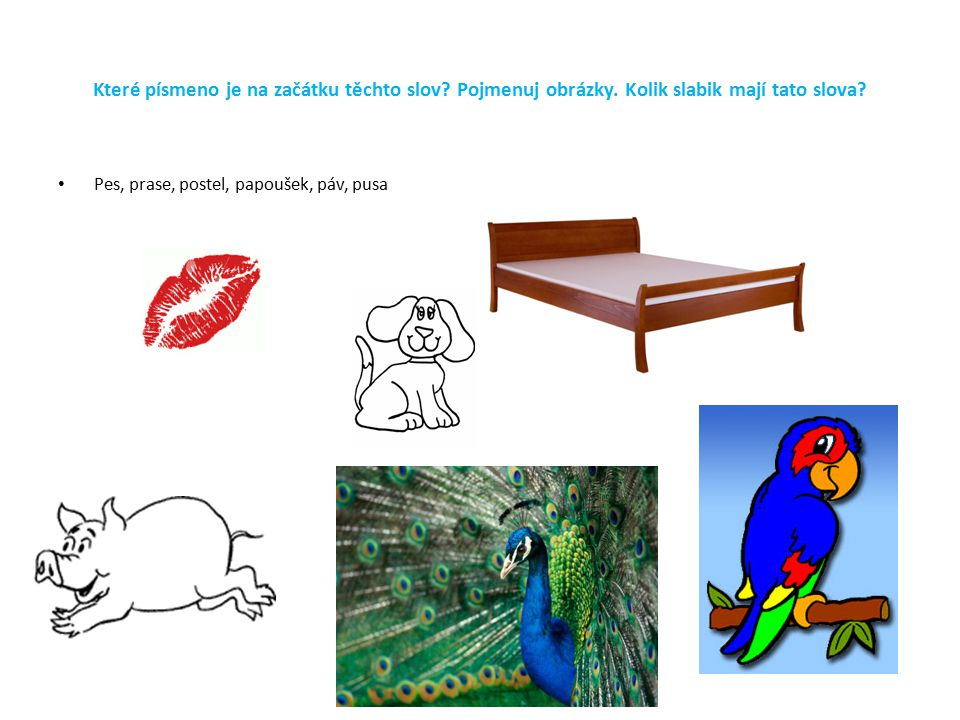 Které písmeno je na začátku těchto slov? Pojmenuj obrázky. Kolik slabik mají tato slova? Pes, prase, postel, papoušek, páv, pusa