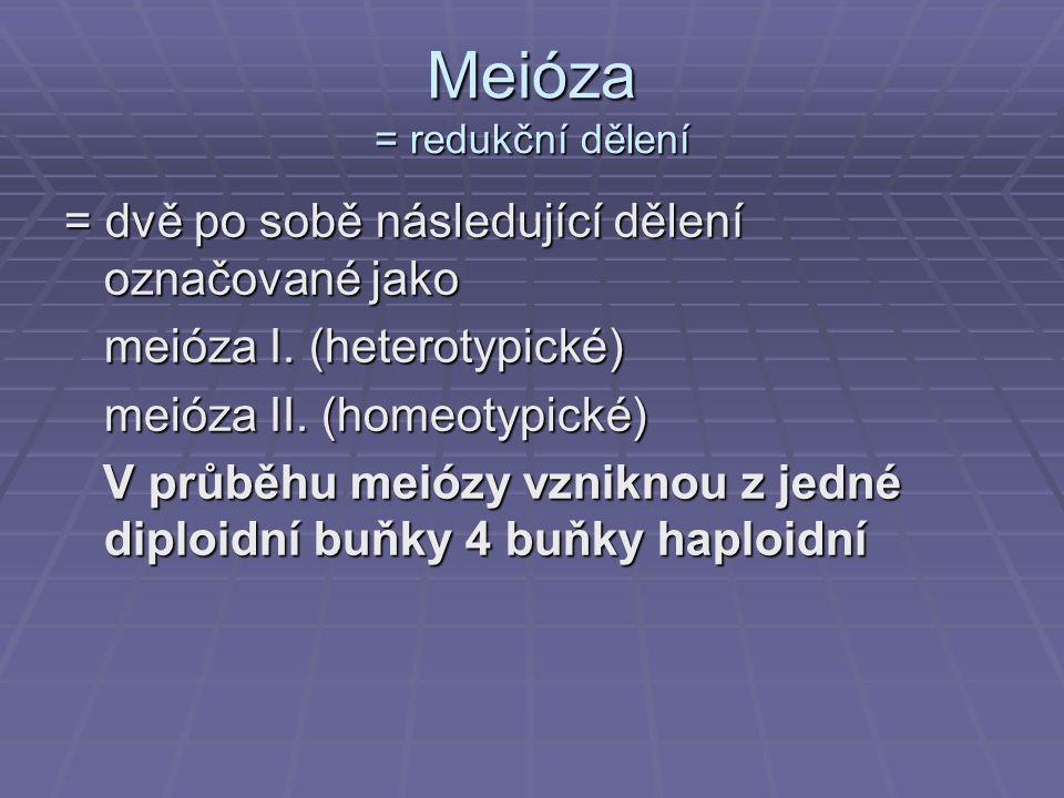Meióza = redukční dělení = dvě po sobě následující dělení označované jako meióza I. (heterotypické) meióza II. (homeotypické) V průběhu meiózy vznikno