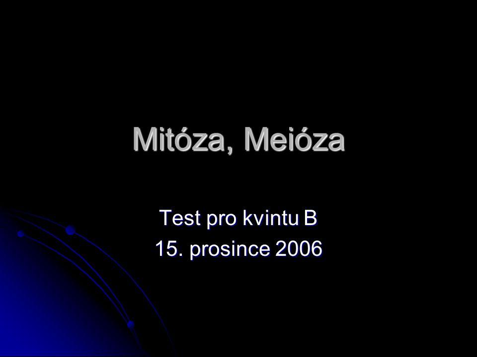 Mitóza, Meióza Test pro kvintu B 15. prosince 2006