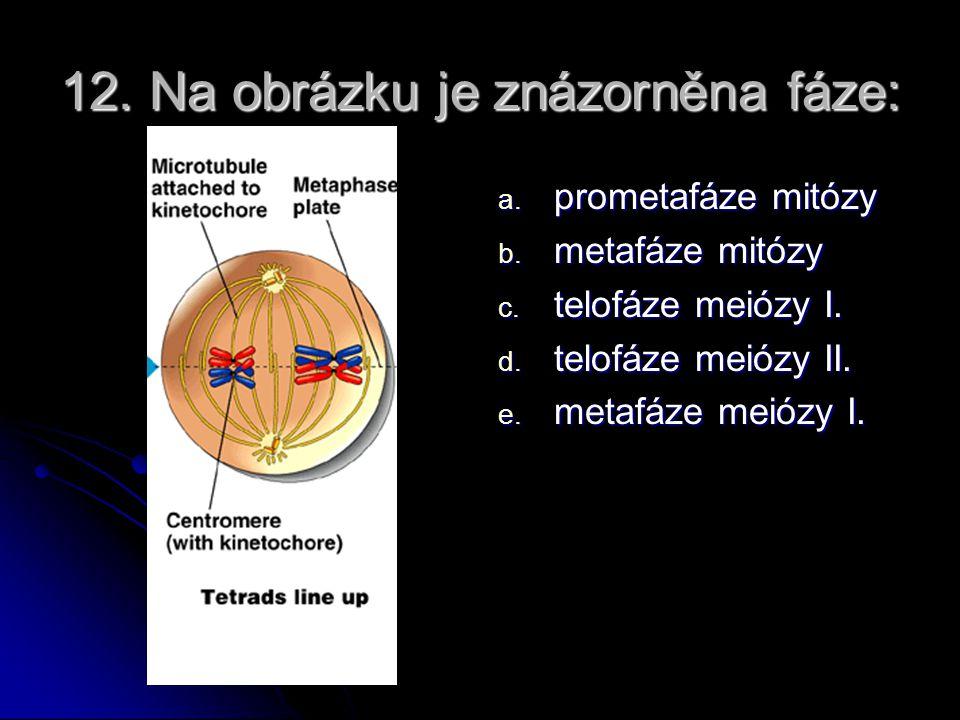 11. Jev na obrázku nese název: a. crossing – over b. karyokineze c. cytokineze d. interfáze e. karyotyp f. genom