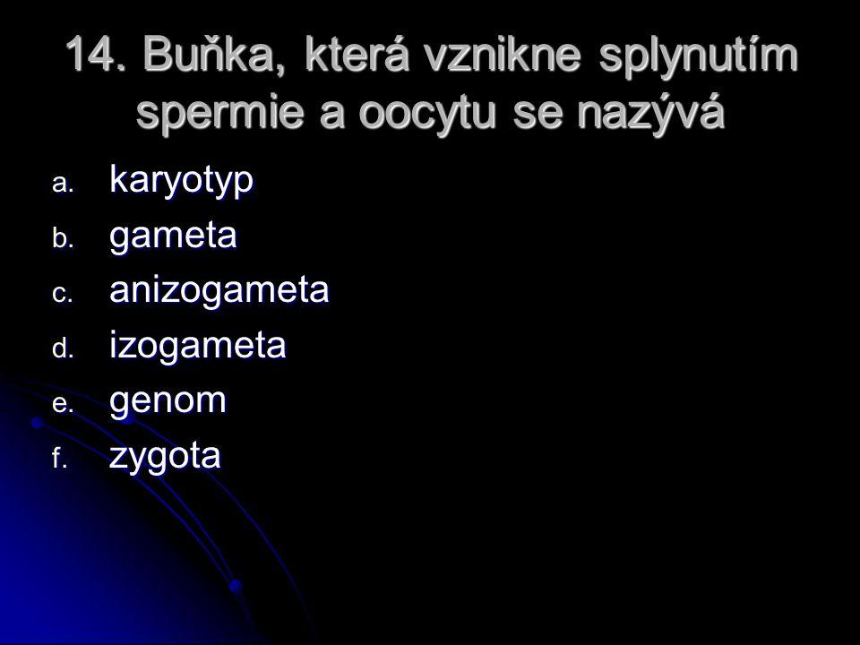 13. Spermie člověka obsahuje a. 46 chromosomů b. vždy kombinaci 22X c. 23 chromosomů d. vždy kombinaci 22Y e. 92 chromatid