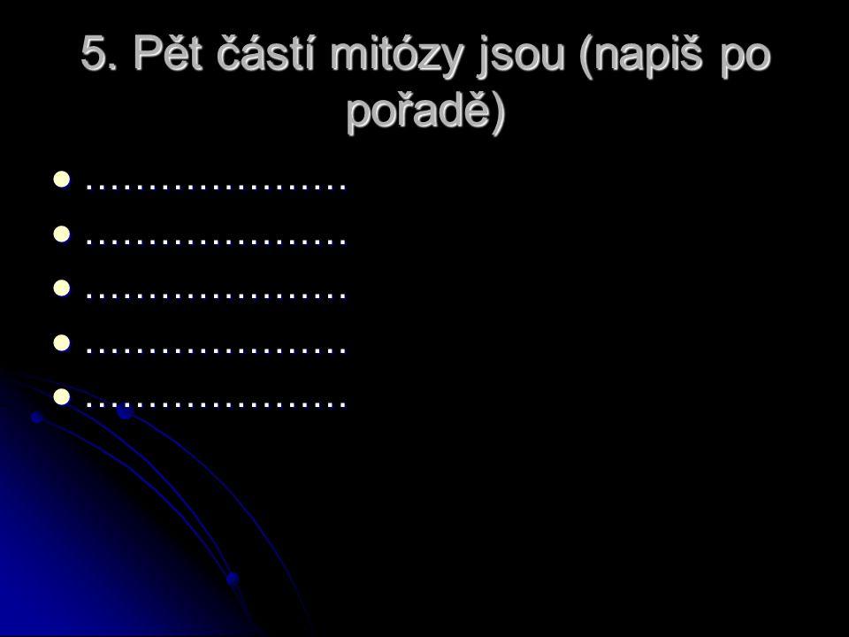 5. Pět částí mitózy jsou (napiš po pořadě) ………………… …………………