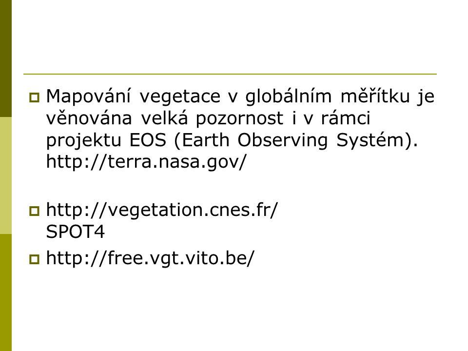  Mapování vegetace v globálním měřítku je věnována velká pozornost i v rámci projektu EOS (Earth Observing Systém). http://terra.nasa.gov/  http://v