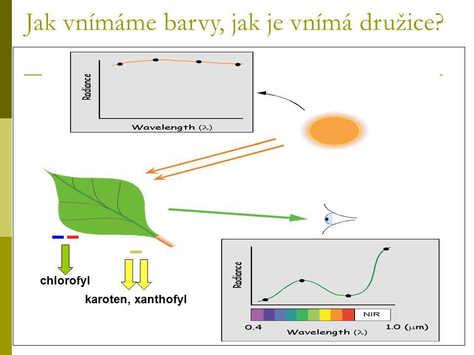 Chlorofyl silně absorbuje viditelné záření (0.4 to 0.7 μm) Buněčná struktura silně odráží blízké infračervené záření N- IR (0.7 – 1.1 μm)